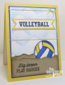2017/08/06/Volleyball_1_by_angelladcrockett.JPG