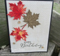 2017/08/31/stampin_up_colorful_seasons_polished_stone_carolpaynestamps3_by_Carol_Payne.JPG