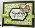 2017/08/20/Stampin_Up_Count_My_Blessings_Stamp_With_Sue_Prather_by_StampinForMySanity.jpg