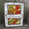 2017/10/13/stampin_up_count_my_blessings_carolpaynestamps1_by_Carol_Payne.JPG