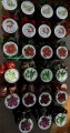 2017/12/12/CCC17DEC_annsforte3_Mason_Jars_Galore_by_annsforte3.jpg