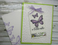 2018/12/13/stampin_up_butterfly_gala_carolpaynestamps1_by_Carol_Payne.JPG