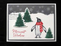 2020/01/19/Penguin_Christmas_by_dcmauch.JPG