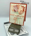 2020/01/29/Stampin_Up_Timeless_Tulips_Jubilee_Mother_s_Day_-_Stamps-N-Lingers_9_by_Stamps-n-lingers.jpg