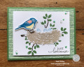 2020/06/12/Birds_Branches_-_Just_because_card1_by_pspapercrafts.jpg