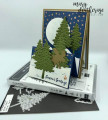 2020/07/31/Stampin_Up_In_the_Pines_Double-Easel_Fun_Fold_-_Stamps-N-Lingers1_by_Stamps-n-lingers.jpg