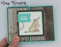2021/02/25/Stampin_Up_Darling_Donkeys_-_Stamp_With_Amy_K_by_amyk3868.jpeg
