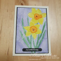 2021/03/04/Watercolour_Daffodils_WCW039_by_fauxme.jpg