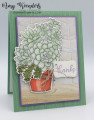 2021/02/26/Stampin_Up_Simply_Succulents_-_Stamp_With_Amy_K_by_amyk3868.jpeg