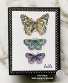 2021/03/04/Butterfly_Brilliance_color1_by_pspapercrafts.jpg