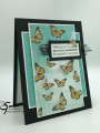 2021/03/04/Stampin_Up_Butterfly_Brilliance_-_Stamp_Wiith_Sue_Prather_by_StampinForMySanity.jpg
