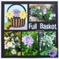 2017/03/07/Flower_basket_full_dmb_sm_by_dawnmercedes.jpg