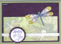 2013/06/23/Dragonfly_card_by_KMay.jpg