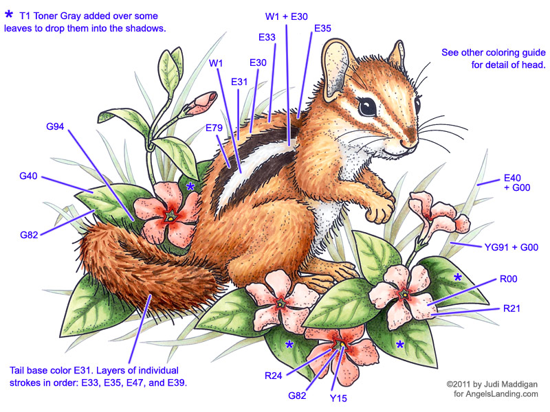 Copic Coloring Guide: Chipmunk & Vinca 2 by Crafts - at ...