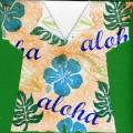 2006/02/11/hula_shirt0526_by_raduse.jpg