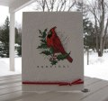 2014/01/31/SCSCCJAN14_January_Card_Christmas_Cardinal_by_Mayapple.jpg