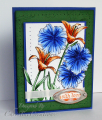 2009/01/05/Bouquet_With_Love_CO_0109_by_ChristineCreations.png