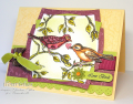 2009/01/19/Love_Birds_CO_0109_by_ChristineCreations.png