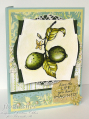 2009/06/11/Limes_and_Life_CO_0609_by_ChristineCreations.png