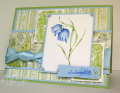 2009/06/26/Solid_Stamps_Checkered_Lily_CO_0609_by_ChristineCreations.png