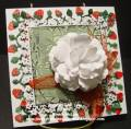 2010/08/06/2_White_rose_with_Strawberries_by_Bonnie_McLain_by_lovelightandpeace.jpg