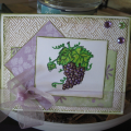 2011/05/20/priscillastyles_grapes_by_vampme3.png