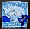 Sealed_Wit