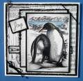 penguins2-
