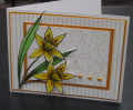 2012/03/04/Daffodil_Color_SS_by_jomeyer.png