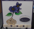 2012/03/09/Violet_Card_SS_by_jomeyer.png