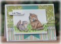 2012/03/18/03-18-12_AL_Racoon_and_Squirrel_by_peanutbee.png