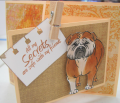 2012/03/24/Bull_dog_colored_card_SS_by_jomeyer.png