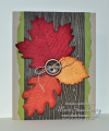 2012/11/27/Autumn-Faux-Suede-Leaves_by_Card_Shark.png