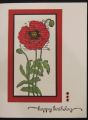 2013/03/25/Birthday_Poppy_by_Hawkeye_Stamper.jpg