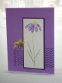 2013/04/06/Flowers_Chevrons_Purple2_by_Stamping_Kitty.jpg