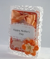 2013/04/09/orange_mothers_daySCS_by_tmcalderini.JPG