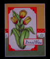 Tulips_by_