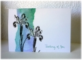 2013/04/17/Flowers_Iris_Darkroom_Door_Garden_Greetings_masking_distress_inks_by_frenziedstamper.jpg