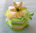 2013/04/26/Green_Treat_Box_by_Em1941.png