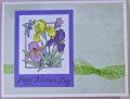 2013/05/03/Mother_s_Day_Irises_by_Hawkeye_Stamper.jpg