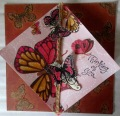2013/05/06/Trangle_Fold_Butterfly_Card_by_caterinafmig.JPG