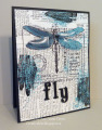IC390-Fly-