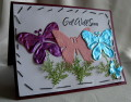 2013/05/27/Butterfly_Garden_1_by_2manycookbooks.jpg