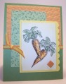 2013/05/28/carrots_by_stampingwriter.jpg