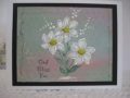 2013/06/03/Painted_flowers_by_marney.JPG