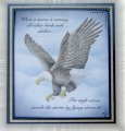 2013/06/12/eagle-card-with-radial-blur_by_stiz2003.jpg