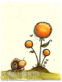 2013/06/13/Snail_yellow_flower_by_SophieLaFontaine.jpg