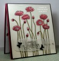 2013/06/27/QFTD171_pretty_poppies_for_your_birthday_by_kokirose.jpg