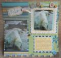 2013/07/24/Polar_Layout1_by_smokiesgal.JPG