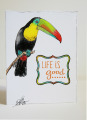 2013/08/03/toucan-Recovered_by_scrapaholic007.jpg